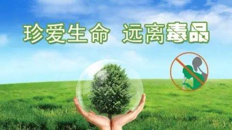 【6.26国际禁毒日】健康人生 绿色无毒